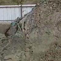 有一批硫砂含金6克,现货1000吨,货在铜陵