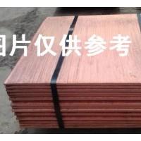 电解铜现货已到云南1500吨,现款现货交易,后每月可供1万吨,有资金实力的速来提货