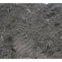 锌厂钴渣  水分58%  铜2-4%  钴3-5%   锌30-40%  现货500吨