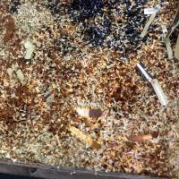 回收各种线路板边料 板材 粉尘框料 金板 铜泥 危废 固废
